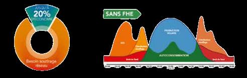 sansfhe-removebg-preview (1)